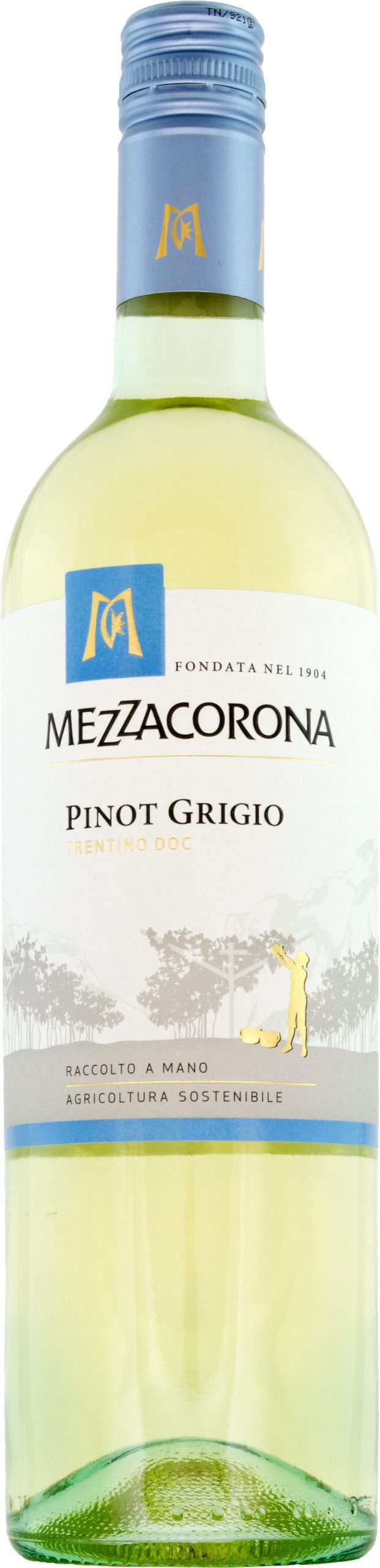 Mezzacorona Pinot Grigio