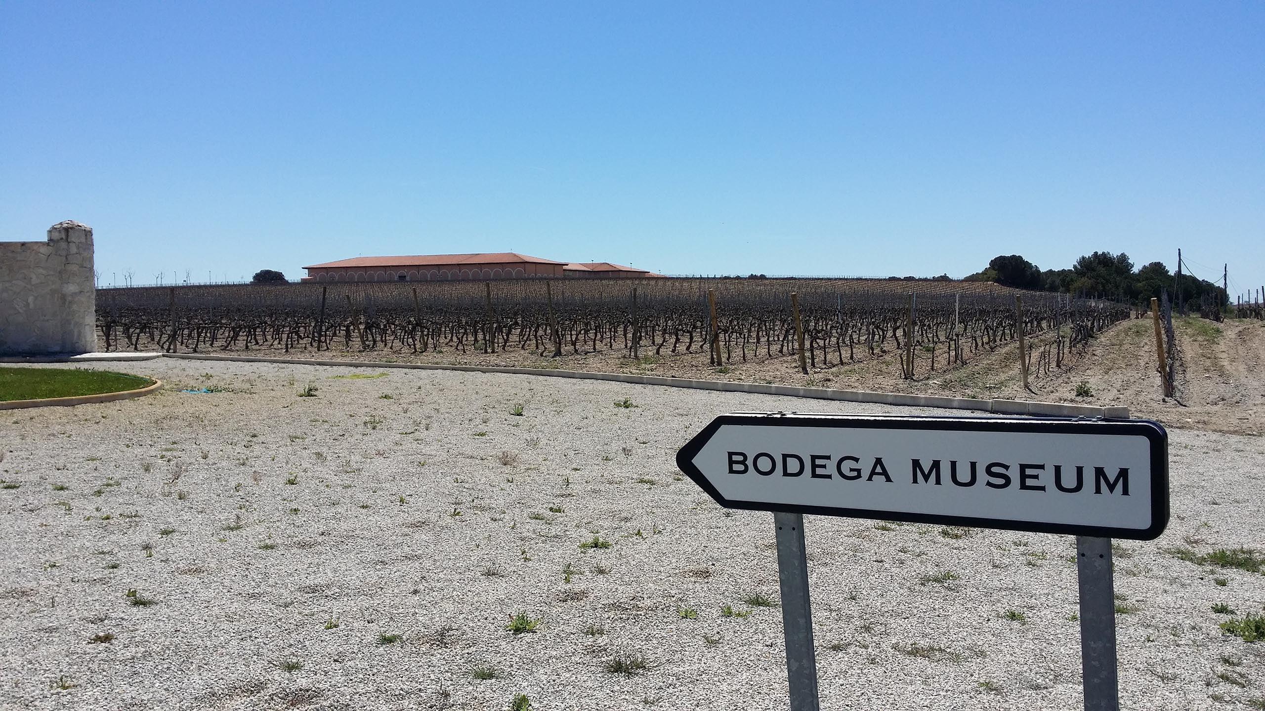 Kyltti bodegan suuntaan Finca Museumilla