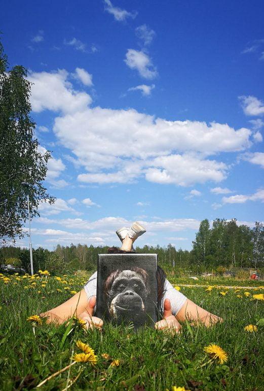 apinaviini piknik